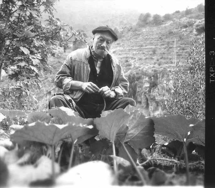 Alberto Bové